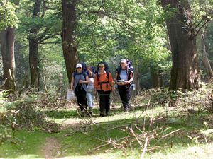 Duke of Edinburgh Award entrants walk through the New Forest