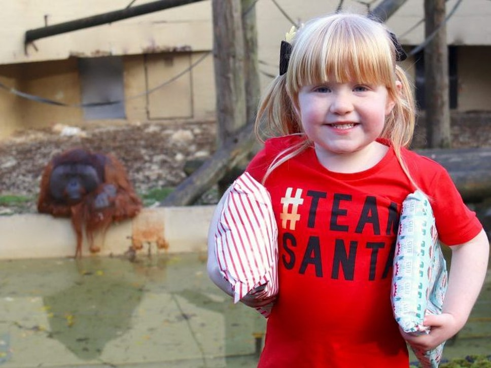 Kind youngster buys Christmas presents for Dudley Zoo animals
