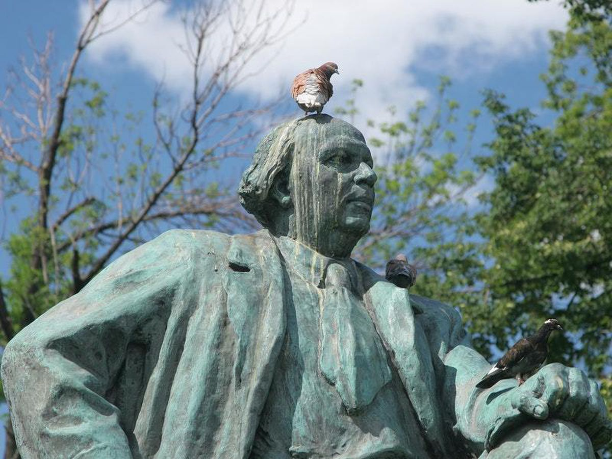 A pigeon perched on a statue