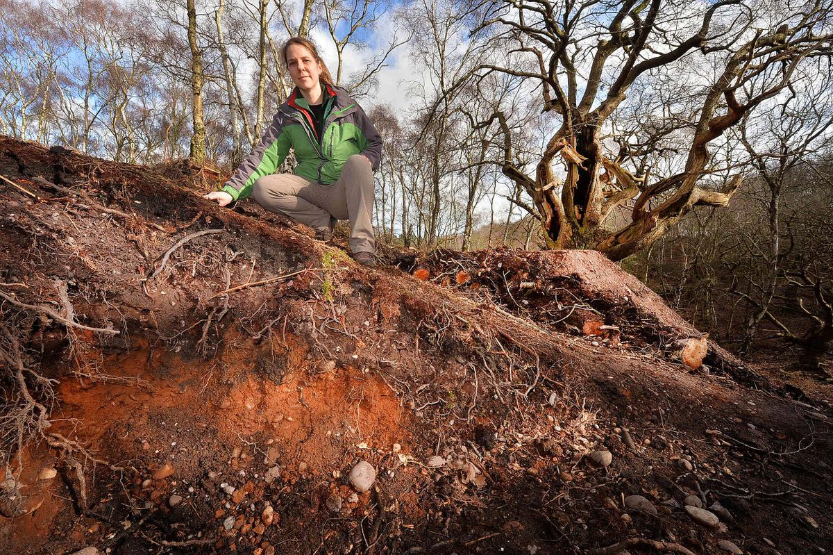 Karen Andrew, countryside ranger for Staffordshire County Council