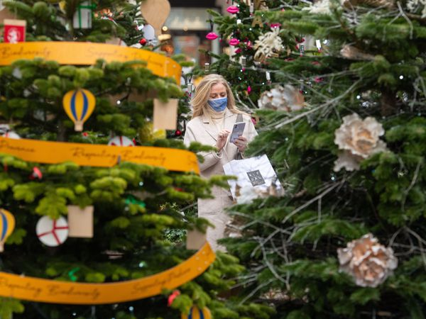 A woman looks at Christmas trees