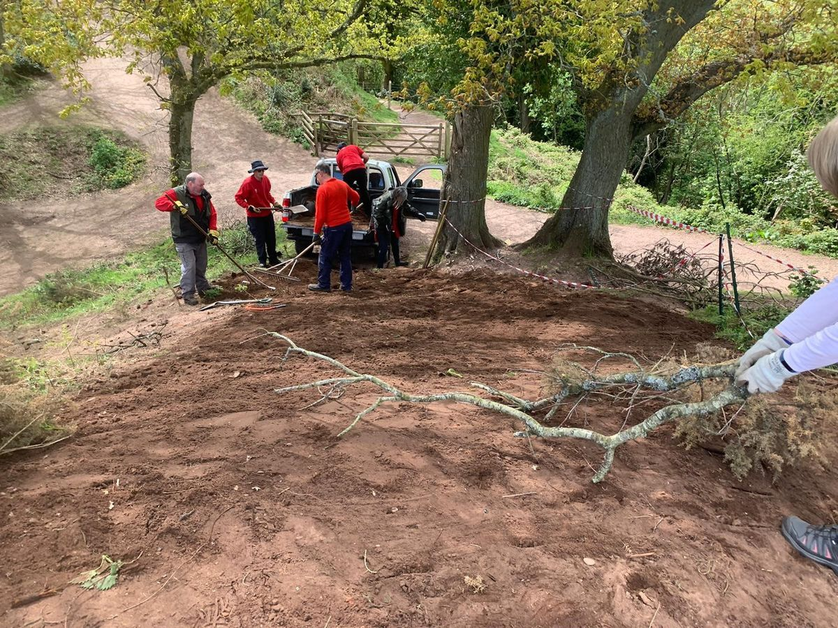 A team of rangers and volunteers have been active at the site