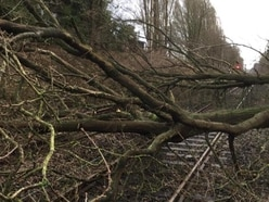 Storm Ciara: Train services and flights hit as clean-up gets under way