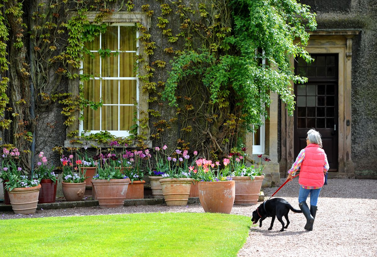 An open garden event will be held at Enville Hall