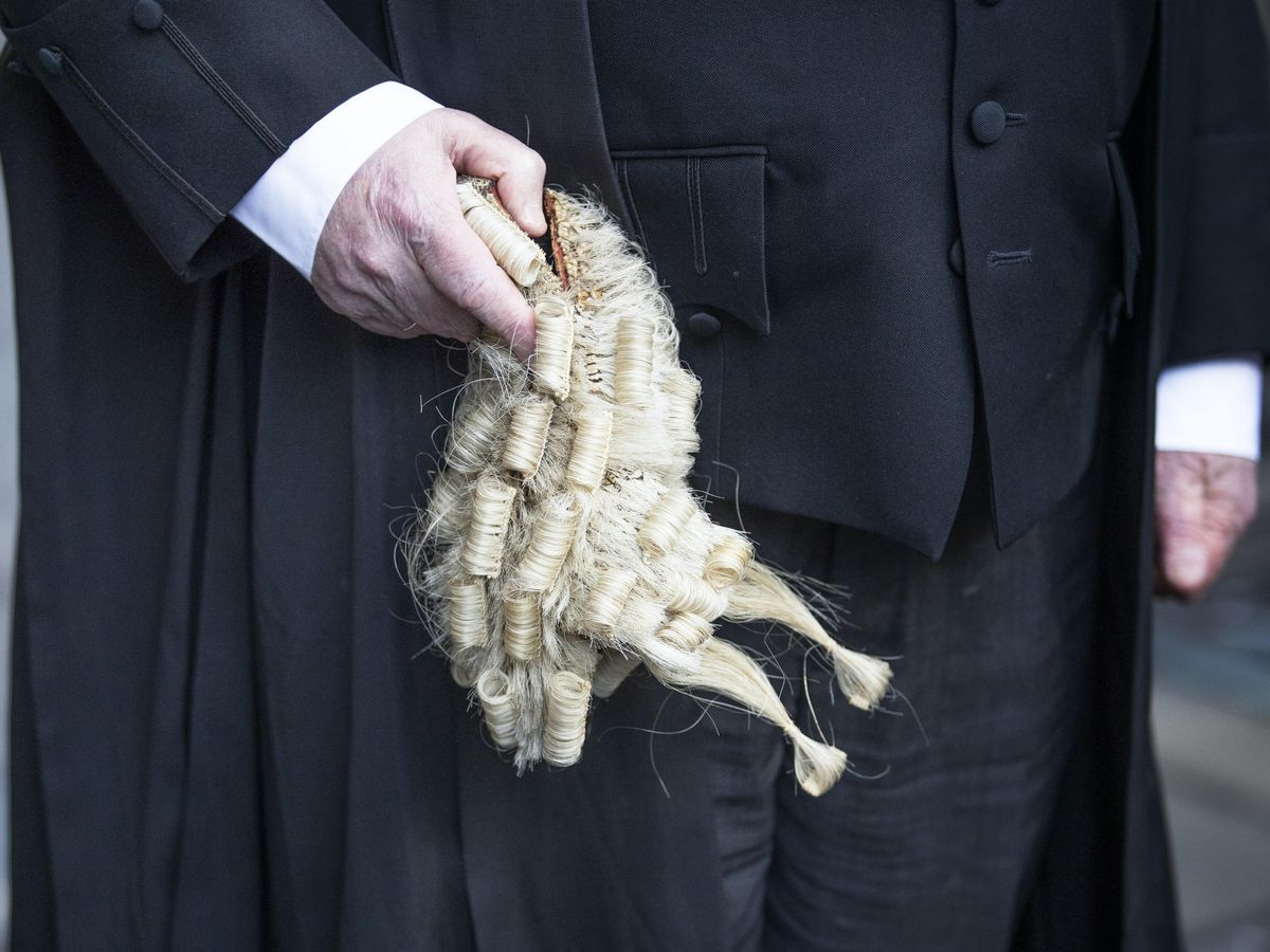 Advocate with wig