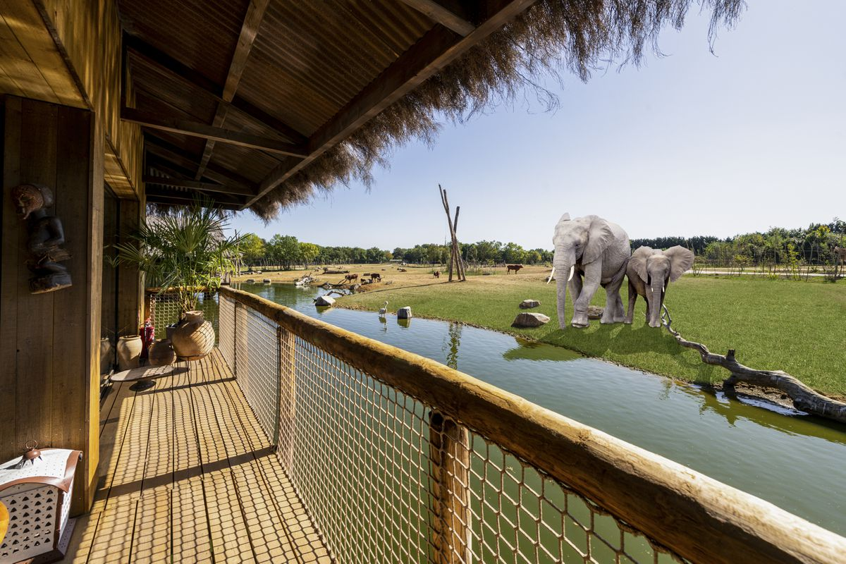 An artist impression of the view from the balcony of Elephant Lodges at West Midland Safari Park