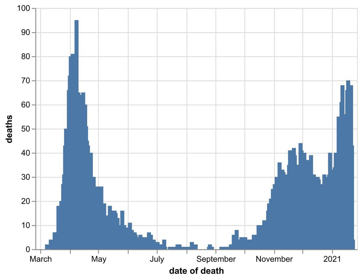 The daily number of coronavirus deaths at Black Country, Birmingham and Staffordshire hospitals as of January 24. By date of death, not date death was announced. Data: NHS England.