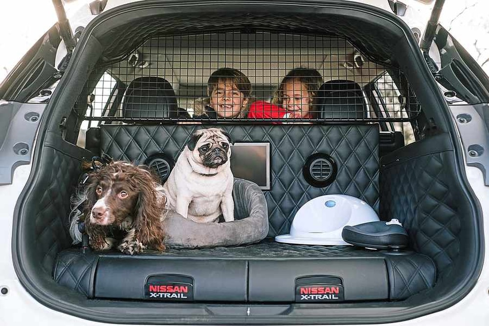 nissan x trail 4dogs the 39 pawfect 39 car for families express star. Black Bedroom Furniture Sets. Home Design Ideas