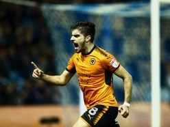 Sheffield Wednesday 0 Wolves 1 – Report and pictures