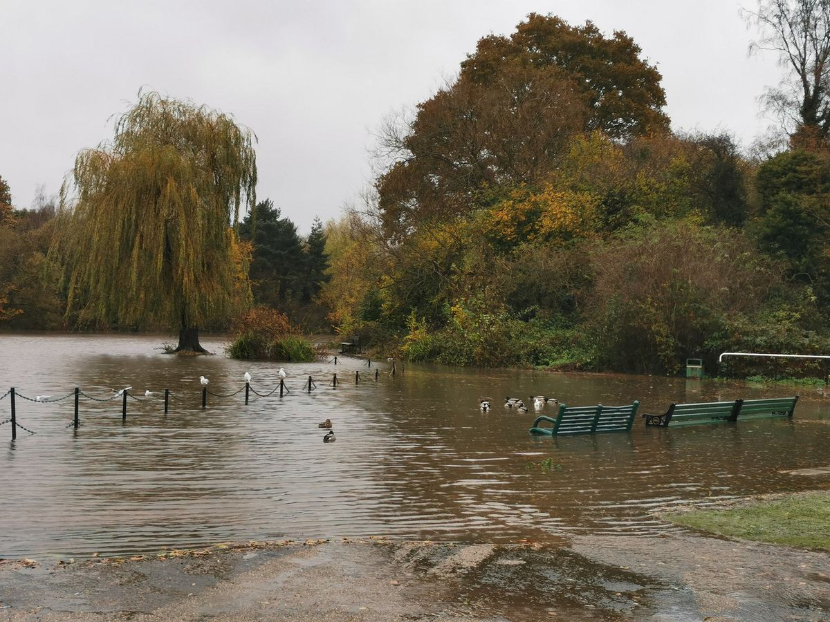 The flooding at King George's VI Park, in Kingswinford. Picture: Tony Hailstone