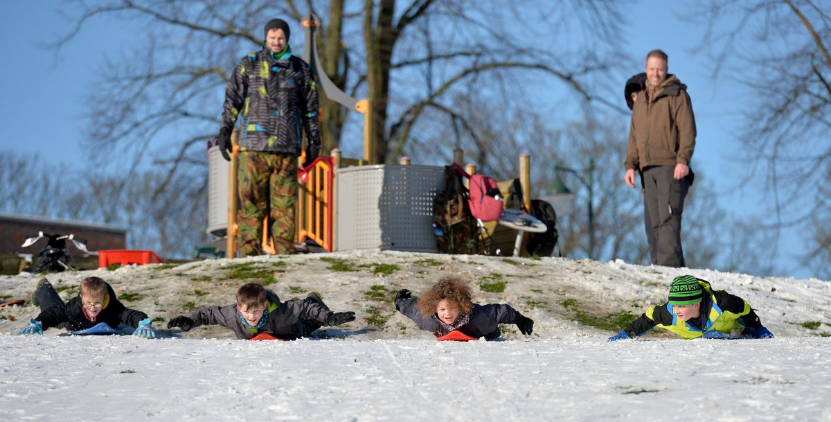 SANDWELL COPYRIGHT TIM STURGESS EXPRESS AND STAR...... 25/01/2021 Snow pictures from around the region. Pictured,  Sandwell Valley and Dartmouth  park, boarding in the park..