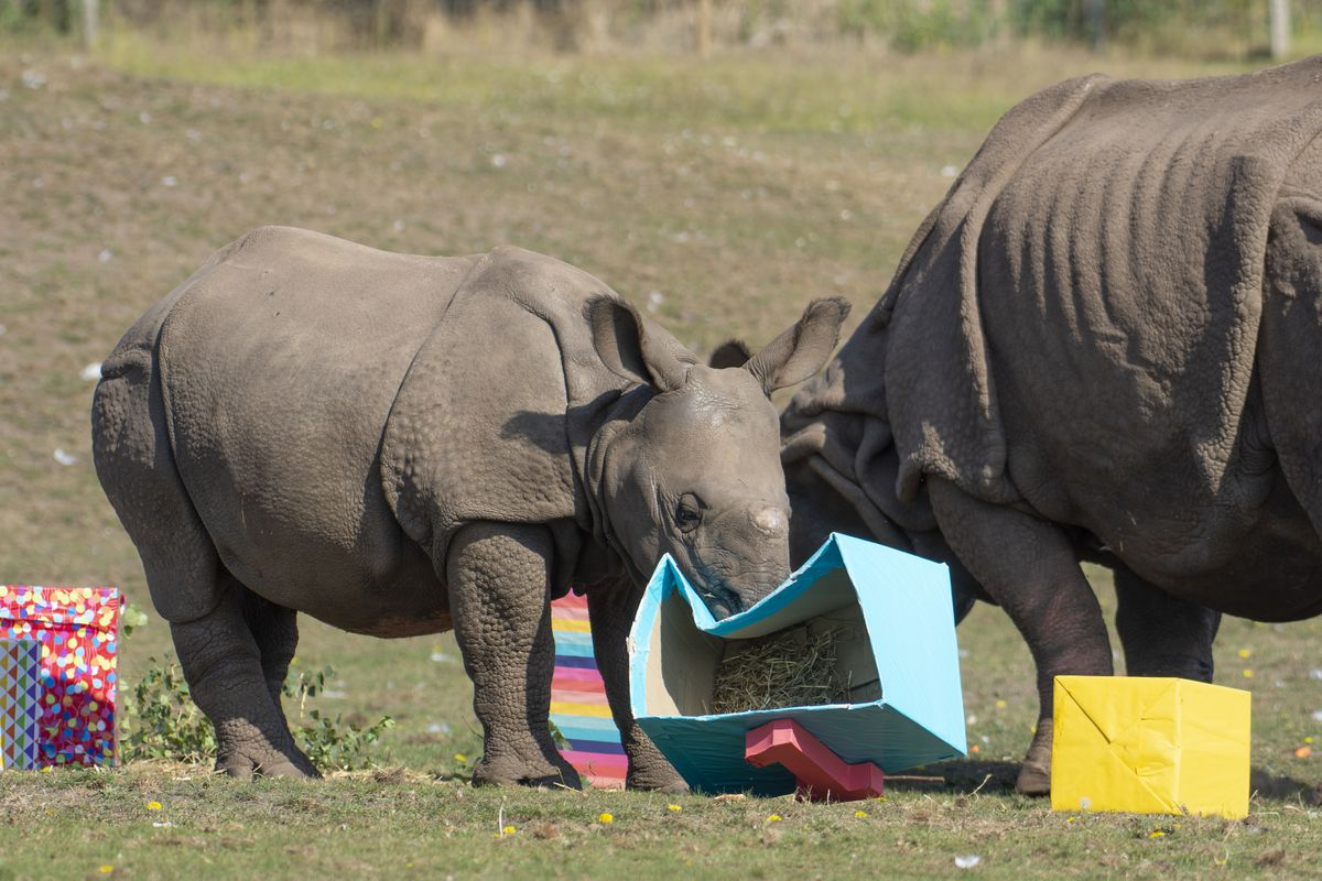 Inesh and his mother Seto with the presents - filled with their favourite treats