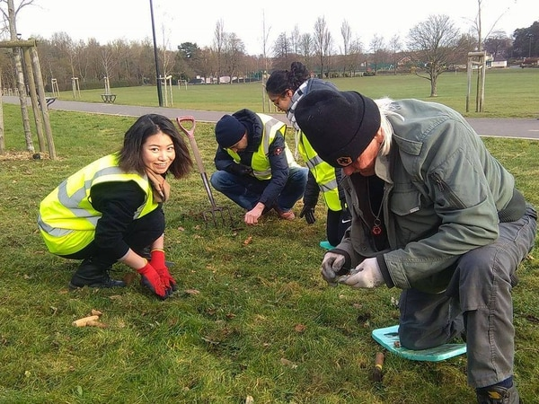 School plants colourful bulbs at Hednesford Park to raise awareness of polio