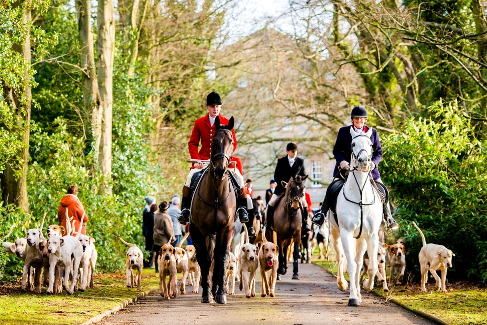 Huge turnout for Boxing Day hunt