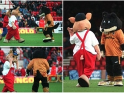 20 years ago: When Wolfie scrapped with three pigs