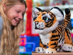 Revealed: The 12 'must-have' toys for Christmas in 2017