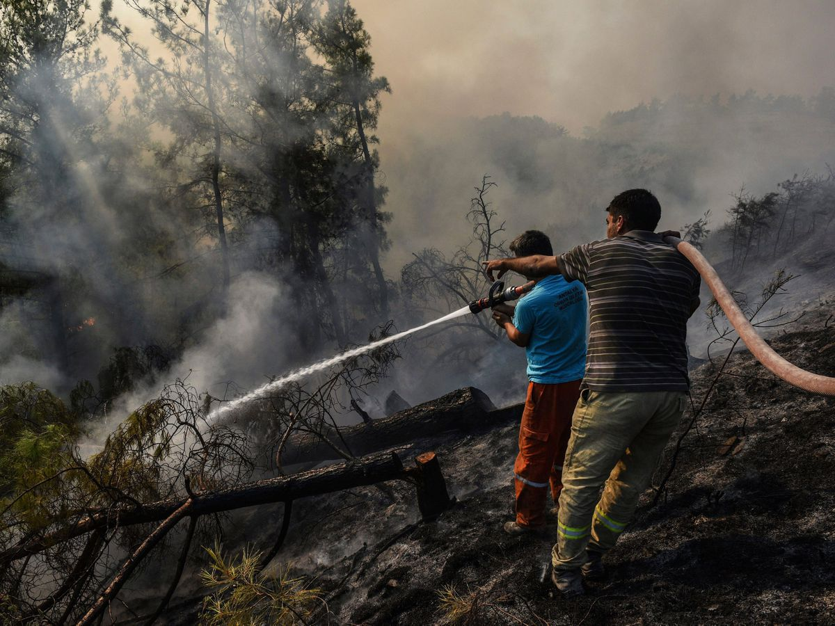 Villagers water trees to stop the wildfires that continue to rage in Antalya, Turkey