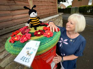 Sedgley Evening Townswomen's Guild have launched a 'save the bees' campaign. Karen Moore from the group has made a postbox toppe