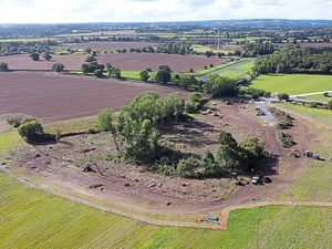 Trees have been felled at Little Lyntus wood, Lichfield, to make way for HS2, sparking protests
