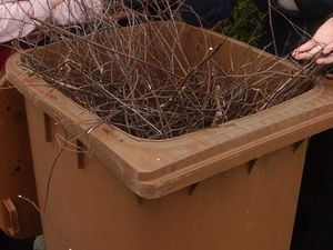 Residents in Stafford could face an annual fee for brown bin collections