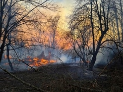 Firefighters work to contain forest fires near Chernobyl nuclear site