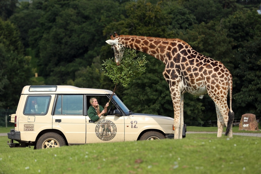Cops rush to West Midlands Safari Park with area on lockdown
