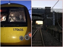 Fallen tree causes train delays after damaging overhead cables