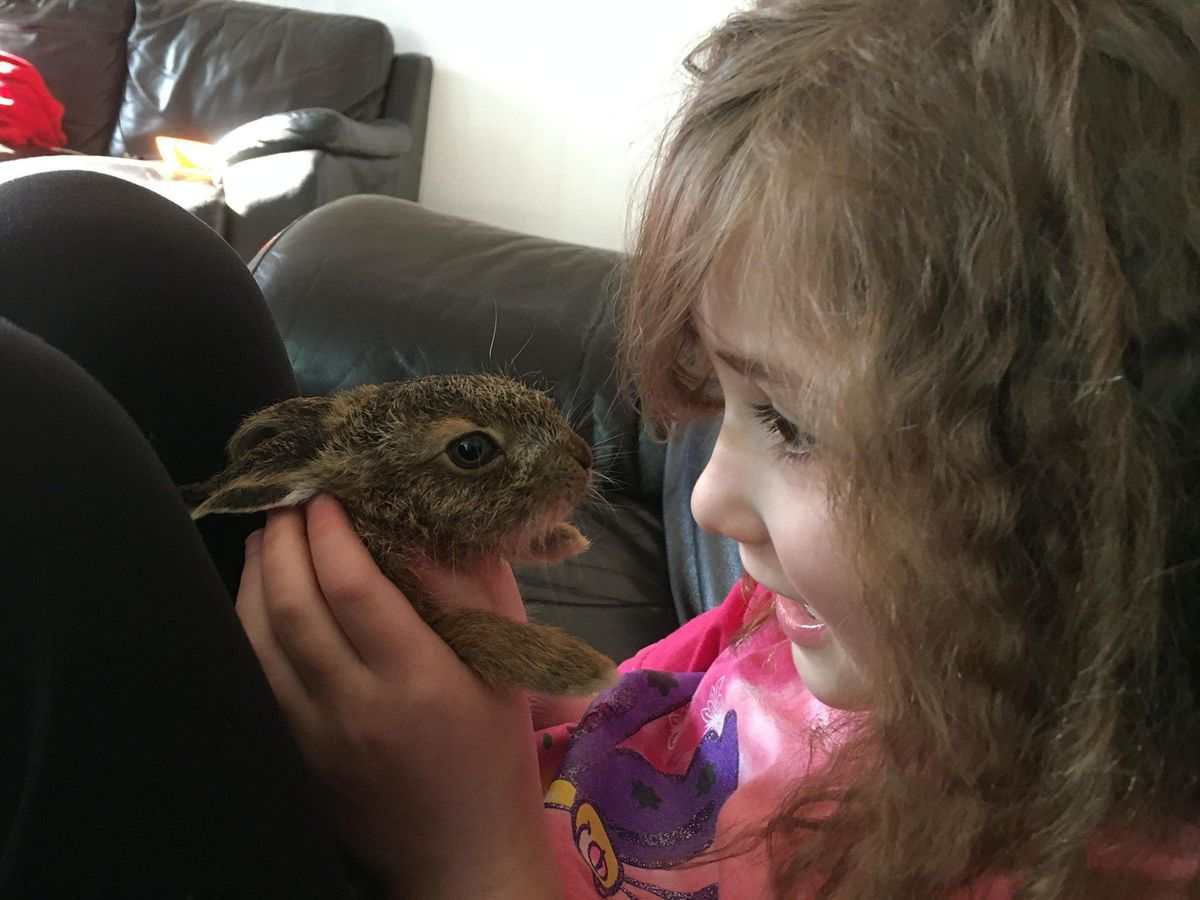 Eliza Terry and Clover the hare