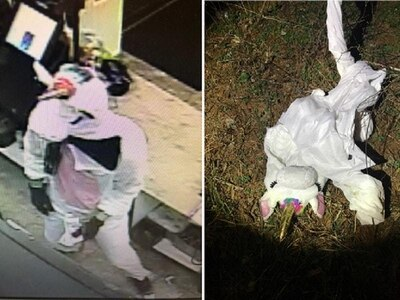 Two charged after man in unicorn costume robs convenience store