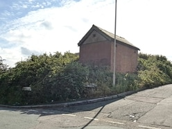 Footpath in Coseley blocked by overgrown bushes