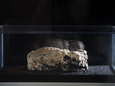 You can now watch the developments of London's monster fatberg via live stream