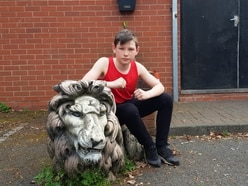 Talented Lions trio are hoping to Box clever