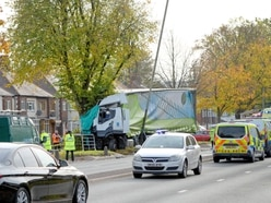 Birmingham New Road crash: Driver killed after lorry hits tree