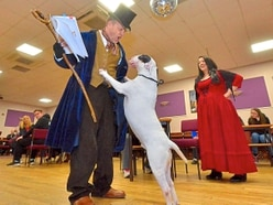 Stage set as dogs hit Bullseye at auditions