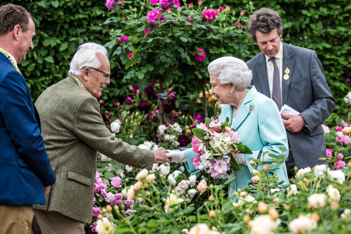 David Austin Sr meeting the Queen at the Chelsea Flower Show