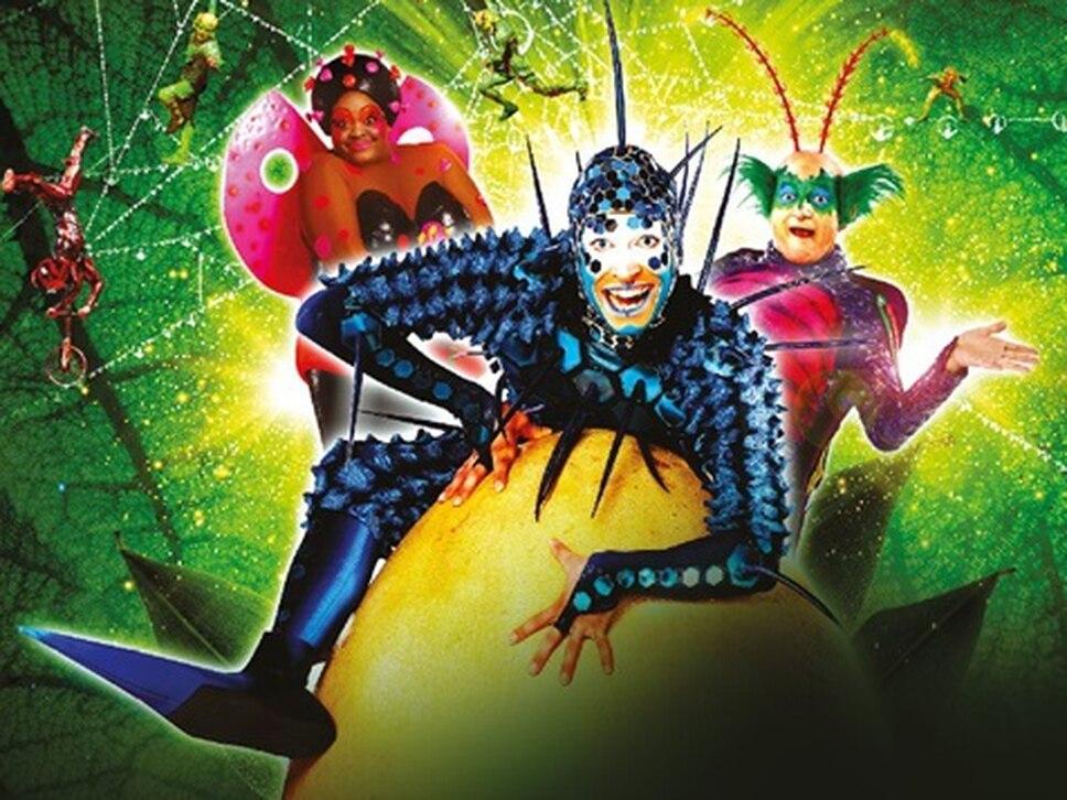 Cirque du Soleil's OVO coming to Birmingham