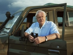 Almost 80,000 apply to watch first episode of new David Attenborough series