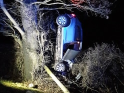 Driver arrested after crash car ends up in tree