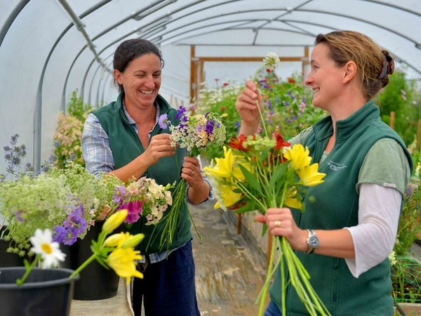Blooming happy: What it's like to run an ethical flower farm