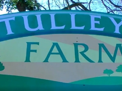 Sussex farm creates drive-thru shop to help protect customers from Covid-19