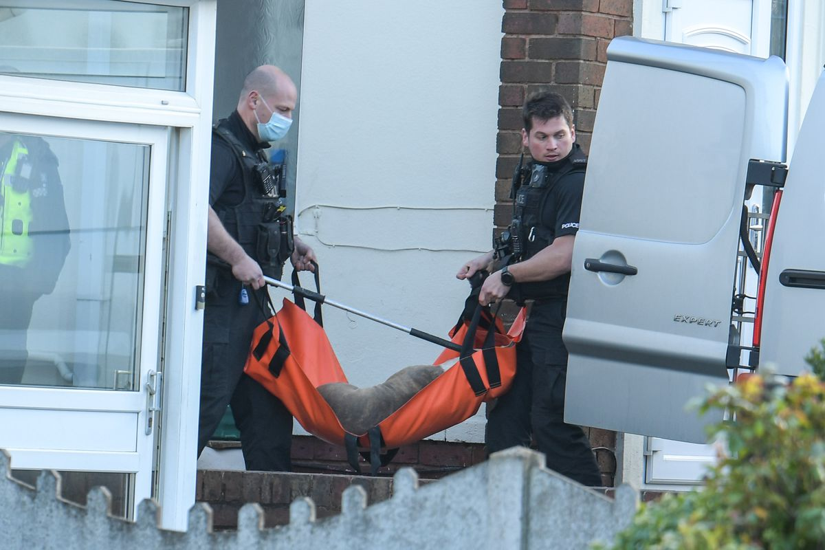 One of the dogs being taken away by police. Photo: SnapperSK