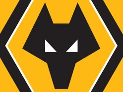 Wolves badge designer denies copying claim