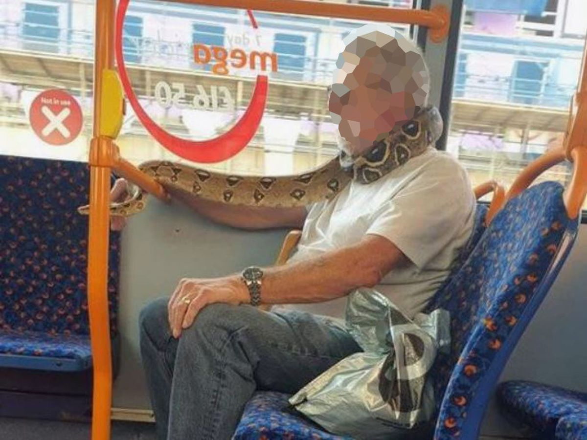 Man 'uses snake as a face mask' on bus | Express & Star