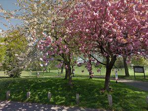 West Smethwick Park. Photo: Google.