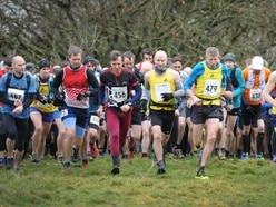 Runners descend on Cannock Chase for annual Trig Point race - with pictures and video