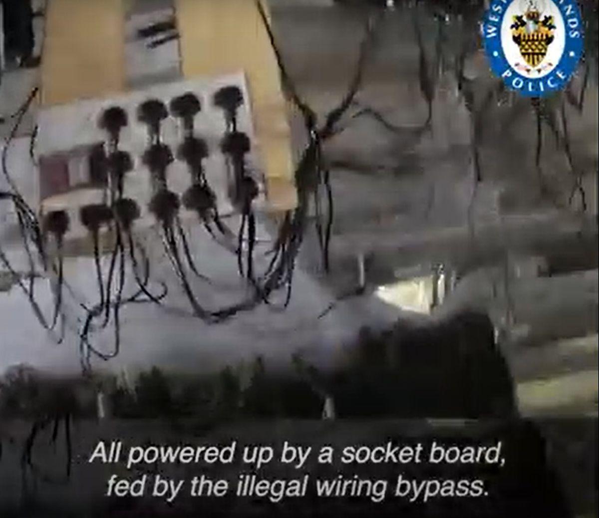 A socket board inside the cannabis factory