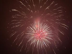 The fireworks were set off from six undisclosed locations across the borough