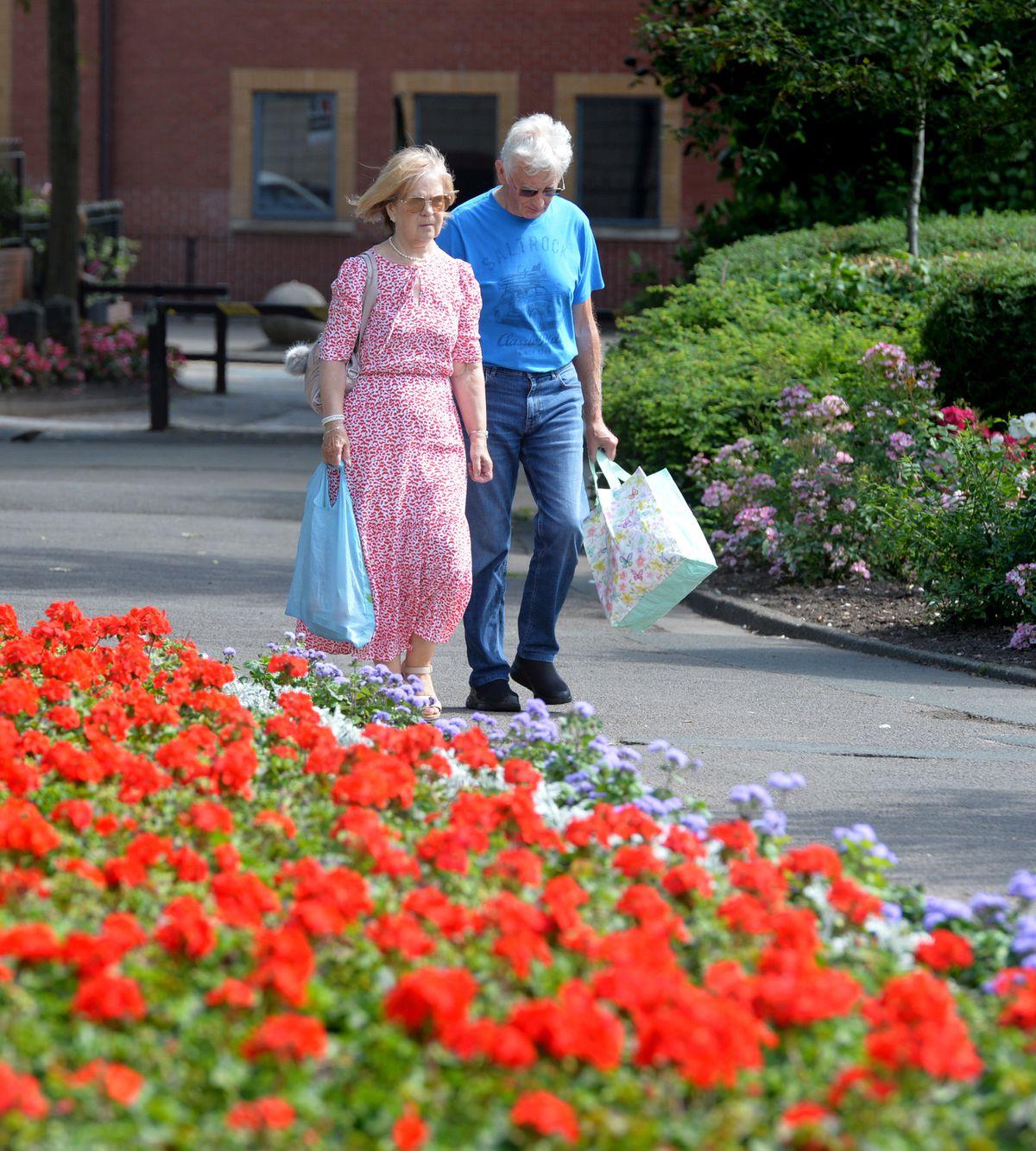 Walking in the flowers in Cannock Park
