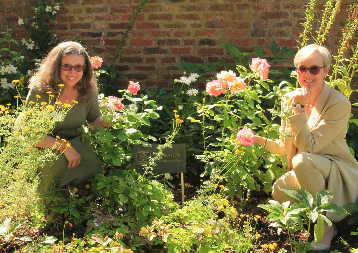 Liz Broadway and Carol Priest from Hartlebury WI next to a group of ten WI Centenary rose bushes called 'Inspiration'