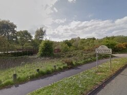 Cannock Chase grazing site plans spark concerns